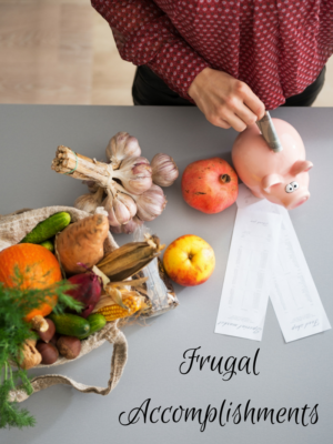 Frugal Accomplishments ~ 2nd week of February